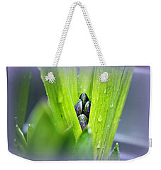 Hyacinth For Micah Weekender Tote Bag