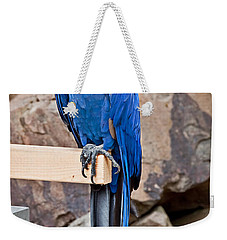Hyacinth Macaw Parrot Bird Art Prints Weekender Tote Bag