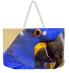 Hyacinth Macaw Portrait Weekender Tote Bag by Lingfai Leung