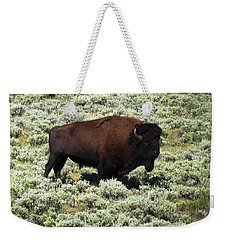 I Am The King Of This Meadow Weekender Tote Bag