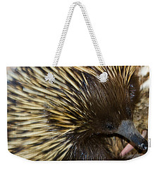 Weekender Tote Bag featuring the photograph I See Some Ants by Miroslava Jurcik