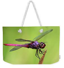 Dragonfly - I See You Weekender Tote Bag