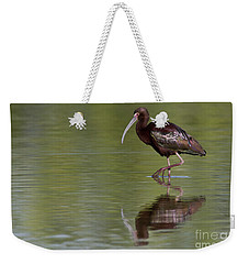 Ibis Reflection Weekender Tote Bag