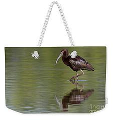 Ibis Reflection Weekender Tote Bag by Bryan Keil
