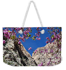 Ice Box Canyon In April Weekender Tote Bag by Alan Socolik