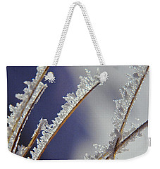 Weekender Tote Bag featuring the photograph Ice Crystals On Fireweed Fairbanks  Alaska By Pat Hathaway 1969 by California Views Mr Pat Hathaway Archives