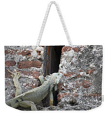 Weekender Tote Bag featuring the photograph Iguana by David S Reynolds