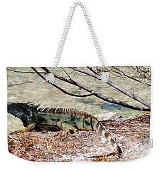 Weekender Tote Bag featuring the photograph Iguana Iguana by Amar Sheow
