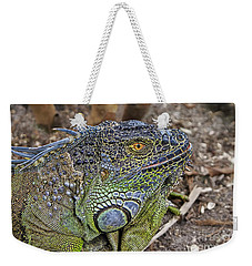 Weekender Tote Bag featuring the photograph Iguana by Olga Hamilton