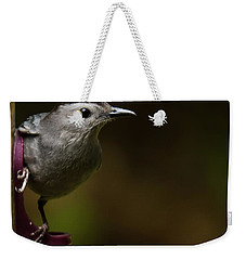 I'm A Cat Bird And I Sound Like One Too Weekender Tote Bag