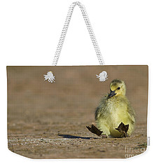 Weekender Tote Bag featuring the photograph I'm Falling by Bryan Keil