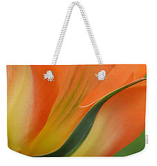 Imperfect Beauty Weekender Tote Bag by Felicia Tica