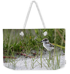 In The Grass - Wilson's Plover Chick Weekender Tote Bag