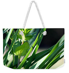 Weekender Tote Bag featuring the photograph In The Grass by Todd Blanchard
