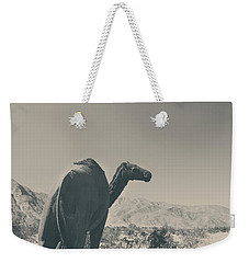 In The Hot Desert Sun Weekender Tote Bag