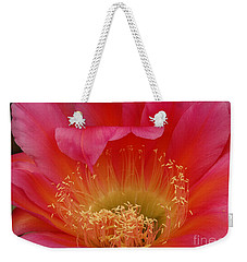 Weekender Tote Bag featuring the photograph In The Pink by Vivian Christopher