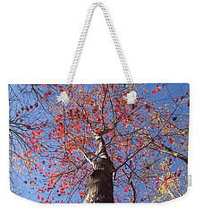 In The Woods 1 Weekender Tote Bag