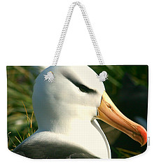Weekender Tote Bag featuring the photograph In Waiting by Amanda Stadther