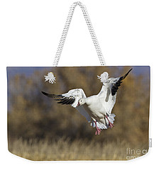 Weekender Tote Bag featuring the photograph Incoming Snow Goose by Bryan Keil
