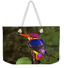 India Three Toed Kingfisher Weekender Tote Bag by Anonymous