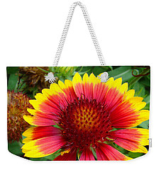 Indian Blanket Flower Weekender Tote Bag by Sue Melvin