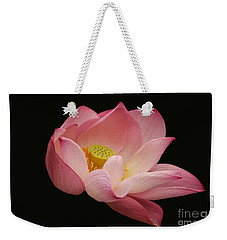 Indian Lotus On Black --- Sacred Light Weekender Tote Bag by Byron Varvarigos