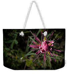 Weekender Tote Bag featuring the photograph Indian Paintbrush  by Dee Dee  Whittle