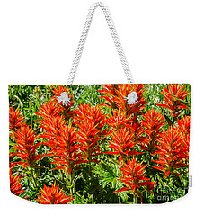 Indian Paintbrush Weekender Tote Bag by Sue Smith