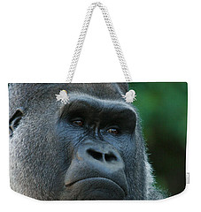 Weekender Tote Bag featuring the photograph Indifference by Judy Whitton