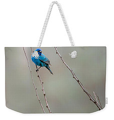 Indigo Bunting Weekender Tote Bag by Bill Wakeley