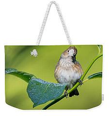 Indigo Bunting Female Weekender Tote Bag by Bill Wakeley