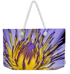 Weekender Tote Bag featuring the photograph Inner Sanctum by Judy Whitton