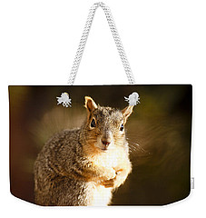 Weekender Tote Bag featuring the photograph Inquisitive Squirell by Marilyn Hunt