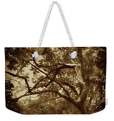 Into The Dark Wood Weekender Tote Bag