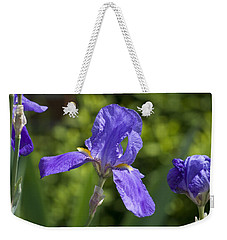 Iris 4 Weekender Tote Bag by Andy Shomock