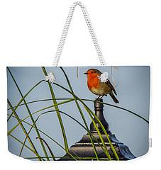 Irish Robin Perched On Garden Lamp Weekender Tote Bag