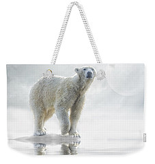 Weekender Tote Bag featuring the photograph Is Anyone Out There? by Brian Tarr