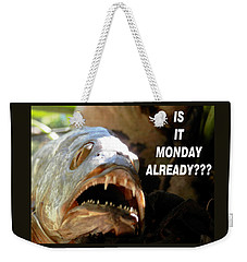 Weekender Tote Bag featuring the photograph Snapper Monday Already by Belinda Lee