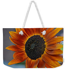 Weekender Tote Bag featuring the photograph Isabella Sun by Joseph Yarbrough