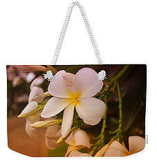 Weekender Tote Bag featuring the photograph Isle De Java by Miguel Winterpacht
