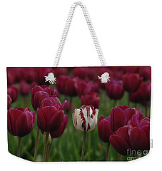 It Is Beautiful Being Different Weekender Tote Bag by Bob Christopher
