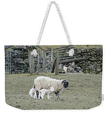 Weekender Tote Bag featuring the photograph It's Spring Time by Tiffany Erdman