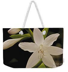 Its Summer Weekender Tote Bag by William Norton