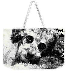 Jack Weekender Tote Bag by Lenore Senior