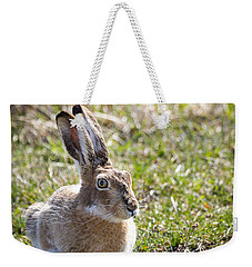 Weekender Tote Bag featuring the photograph Jackrabbit by Michael Chatt
