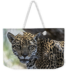 Jaguar Portrait Weekender Tote Bag