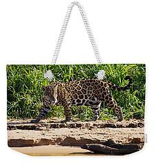 Jaguar River Walk Weekender Tote Bag by David Beebe