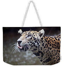 Jaguar Sticking Out Tongue Weekender Tote Bag