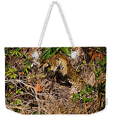 Jaguar Vs Caiman 2 Weekender Tote Bag
