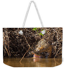 Jaguar Vs Caiman Weekender Tote Bag